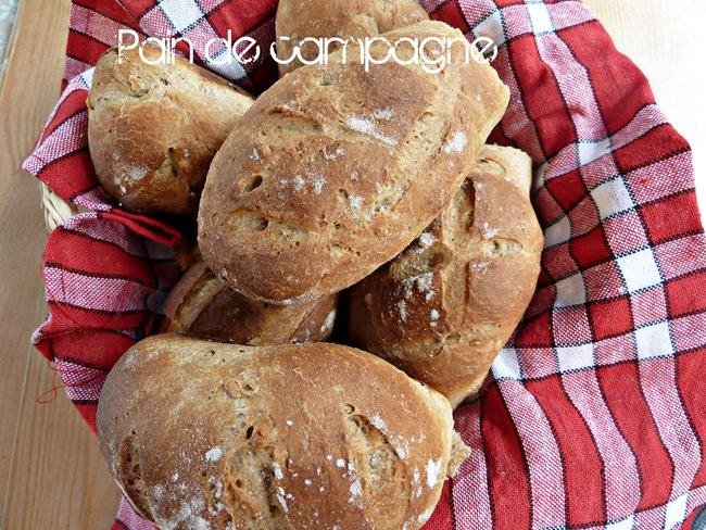 pain de